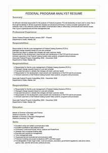 Computer Skills In Resume Sample Sample Federal Program Analyst Resume