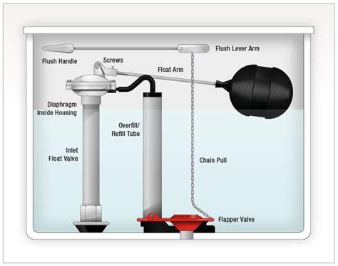 How To Fix A Leaking Toilet Tank?  Leaking Toiletleaky