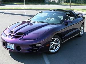 Anyone Else Have A Purple Firebird   Trans Am