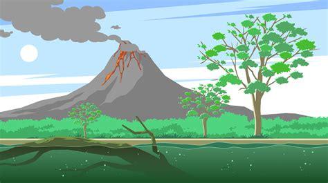 gum tree   volcano  vector