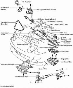 1989 Camry Engineponent Diagram