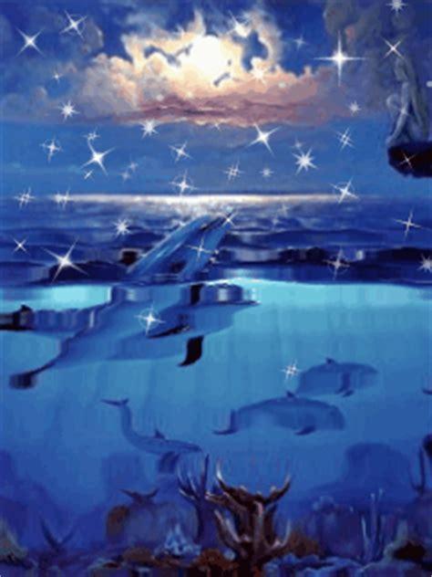 dauphins 9 fonds 233 cran anim 233 gratuits pour mobile