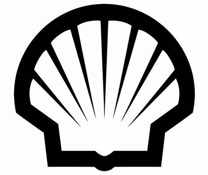 Shell Symbol Seashell Meaning Logos History Evolution