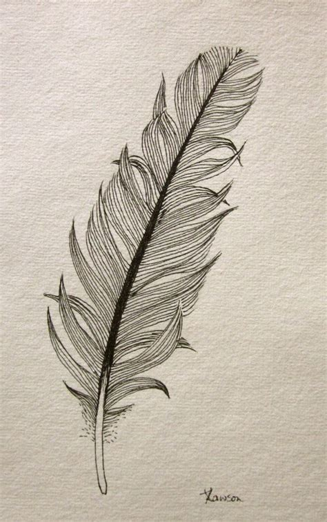 feather drawing pencil sketch colorful realistic art