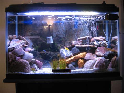 petsmart aquarium decorations aquarium decorations 29 gallon top fin 29 gallon hooded