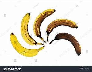 Oxidation Of A Banana During Six Days Stock Photo