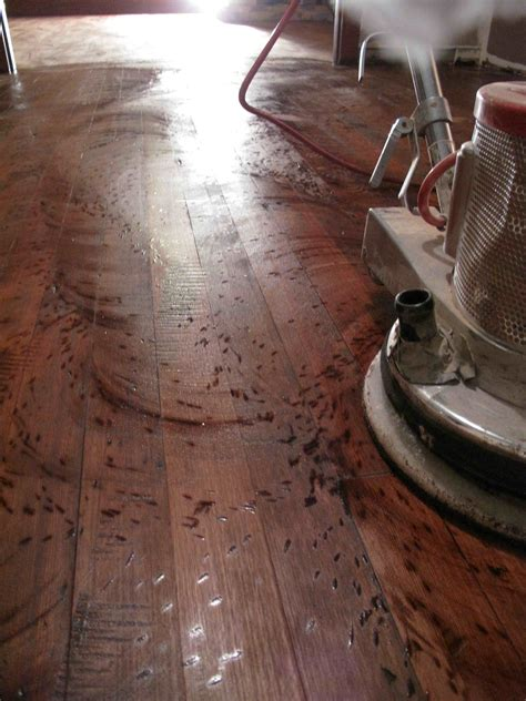distress hardwood floor enumclaw wa hoffmann hardwood floors