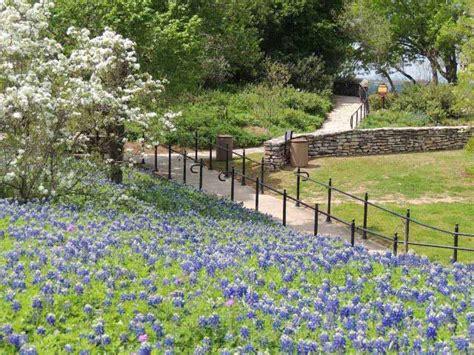 san antonio botanical gardens san antonio botanical garden tour