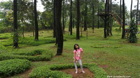 hunting photo  objek wisata rumah pohon kabupaten