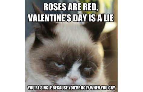 Grumpy Cat Meme Valentines Day - carlees blog the origins of grumpy cat