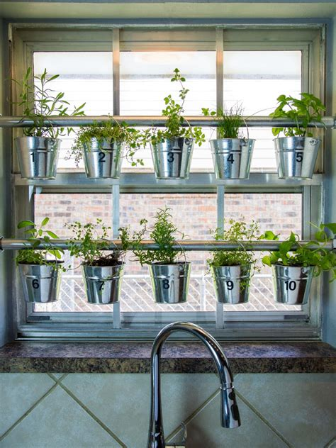 Window Garden Plants by Succulents Hops And More Plants In Millennial Gardens