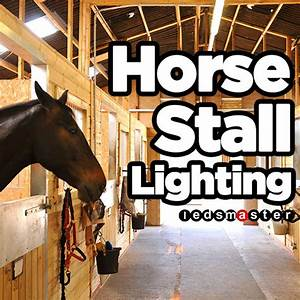 Aisle Lighting System Lighting For Horse Stall Barn Aisle And Stables