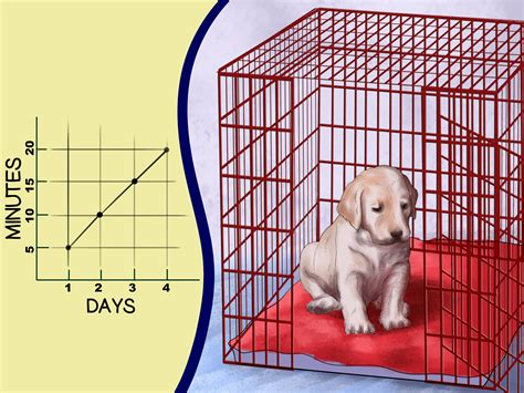 crate a puppy how to buy a puppy crate 13 steps with pictures wikihow