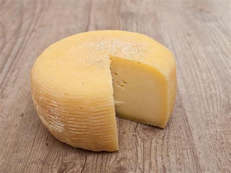 pecorino romano sardinian pecorino cheese gastronomy travel ideas