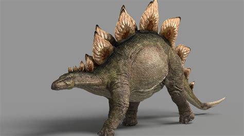 stegosaurus  model cgstudio