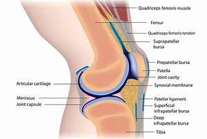 Suffering From Knee Pain  Discover More Options