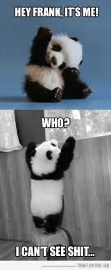 panda goodbye quotes quotesgram
