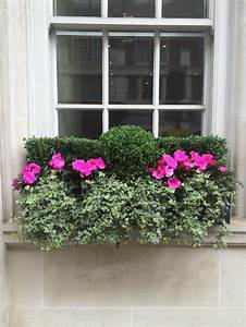 31, Of, The, Best, Window, Boxes, In, London, Photos
