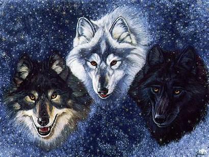 Fanpop Wolves Wolf 保存 Fantasy