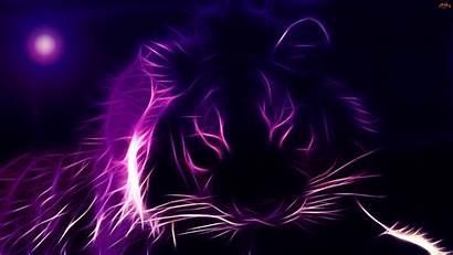 Tiger Animated 3d Animal Desktop Purple