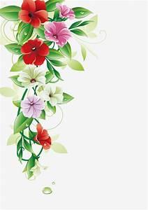 Flower Border  Vector Leaves  Petal Png Transparent