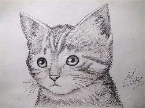 Cute Kitty Drawing By MCorderroure On DeviantART