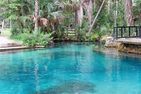 Alexander Springs: Ocala National Forest | VISIT FLORIDA