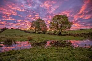 Der Irland Shop : wenn dich in irland der morgen wachk sst natur view fotocommunity ~ Orissabook.com Haus und Dekorationen
