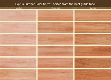 lyptus flooring manufactured by weyerhaeuser weyerhaeuser lyptus wood with a pedigree and a trademark