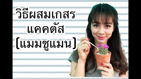 CactusnAjA ตอน วิธีผสมเกสรแคคตัส (แมมชูแมน) - YouTube