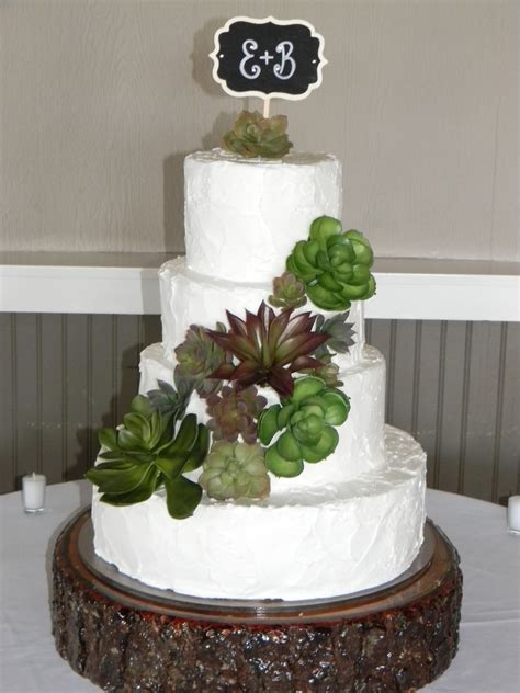 rustic wedding cake with succulents cakecentral com