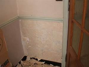 forum questions maconnerie enduire ou crepir un mur de With enduire un mur en pierre interieur
