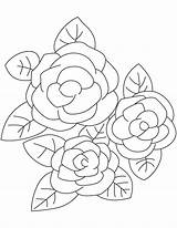 Gardenia Shrubs Evergreen Coloring Pages sketch template