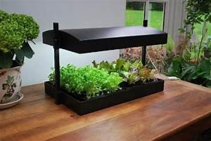 vasen ubertopfe und andere wohnaccessoires von garland With katzennetz balkon mit garland garden tray