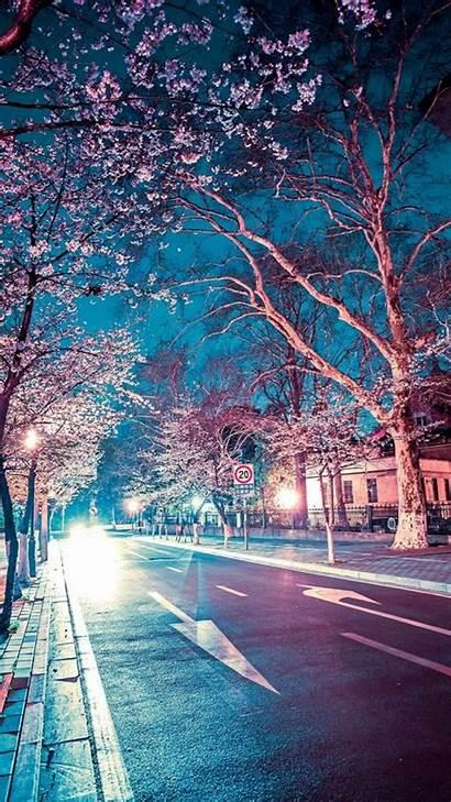 Aesthetic Japanese Wallpapers Iphone Cherry Night Tree