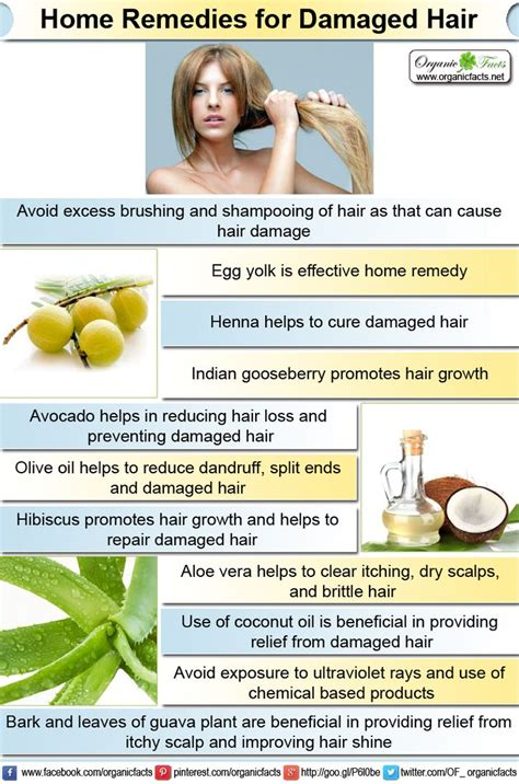 home remedies for damaged hair 17 best images about home remedies on aloe