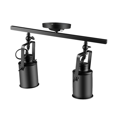 adjustable 2 light track lighting kit with ceiling mount
