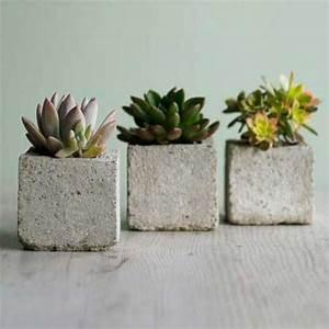 Blumentöpfe Aus Beton : 35 gr npflanzen bilder bl hende zimmerpflanzen ~ Michelbontemps.com Haus und Dekorationen