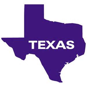 Texas State Outline Vector