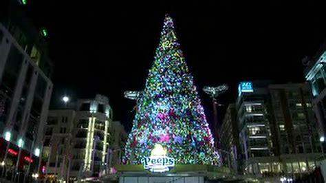 christmas tree lighting at national harbor wjla