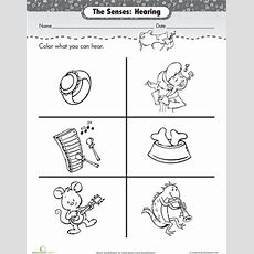 17 Best Images About In Prima On Pinterest  Mini Books, Hidden Pictures And Fact Families