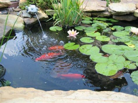 decoration bassin poisson exterieur 27 id 233 233 s pour le bassin de jardin pr 233 form 233 hors sol archzine fr