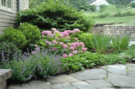 Timothy Lee Landscape Design surrounded this 'Endless