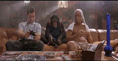 Monkey Stoned Weed Stonerdays Gifs Pineapple Express