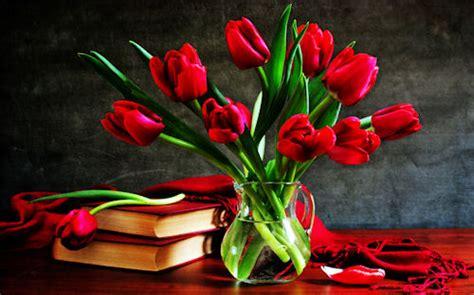 banco de im 193 genes flores bonitas para tu madrecita 10 de mayo