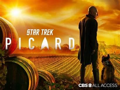 Trek Picard Cbs Scifiempire