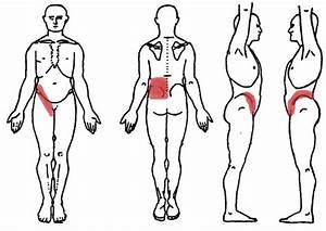 Effective Ways  Back Pain Kidney Problems