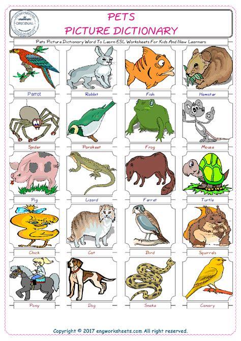 pets esl printable english vocabulary worksheets