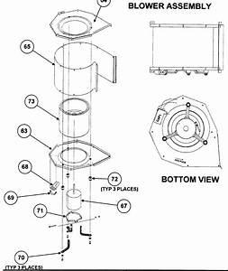 Payne Heat Pump Indoor Fan Motor   Blower     Parts