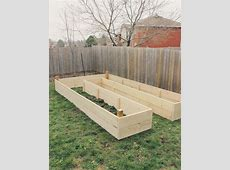 Learn How to Build A UShaped Raised Garden Bed Perfect